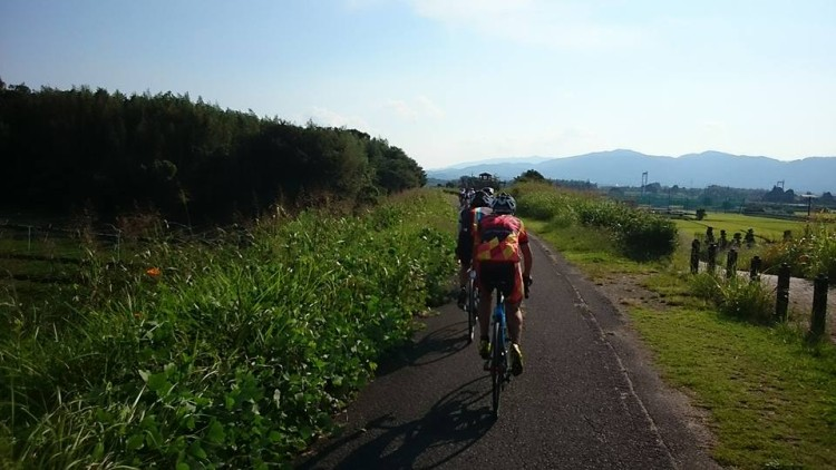 サイクリング道路、京田辺市にて。 草が伸びて道幅が狭いです。