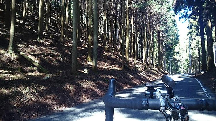 神吉手前で森林浴です。