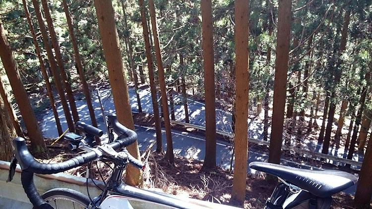 京都のロード乗りのメッカ花背峠。つづら折れが続きます。 峠までもう少しです。