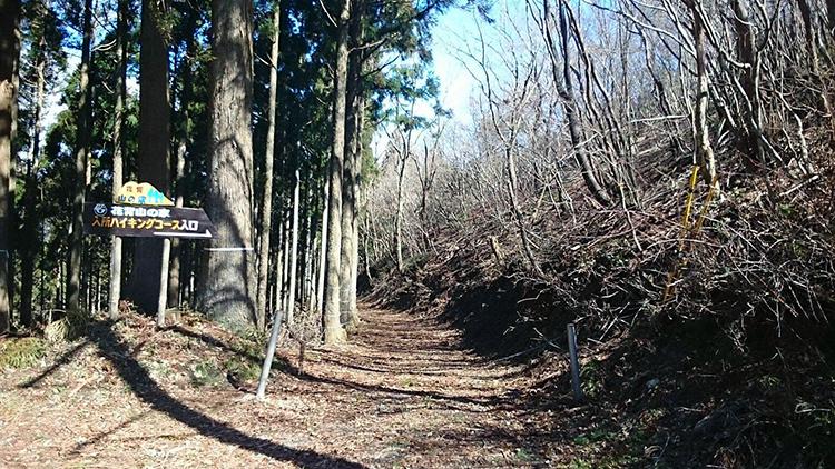 花脊峠にて。新緑が楽しみです。
