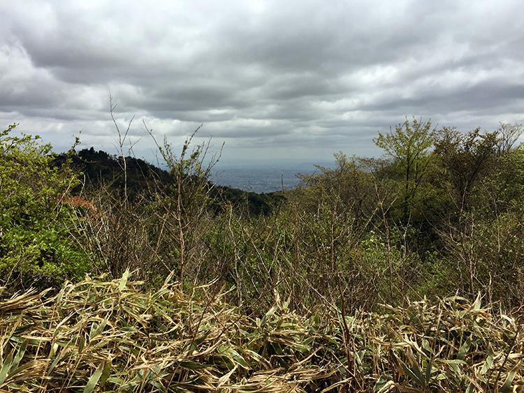山頂は曇りで、結構寒かったです。