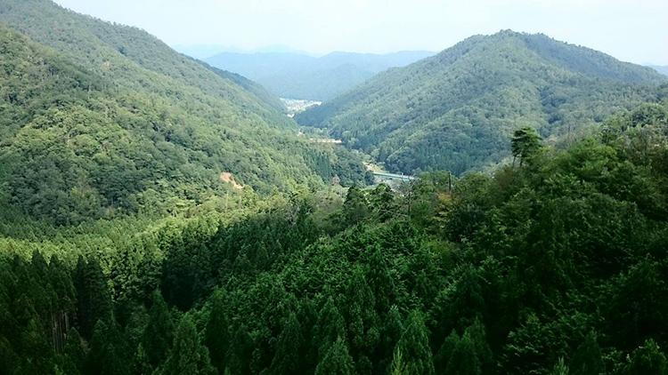 福住大橋から、麓の福住を眺めます。