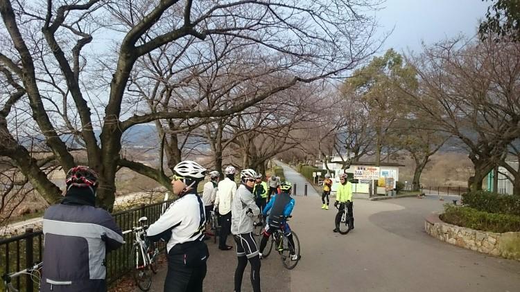 背割堤にて 桜の季節が待ち遠しいです
